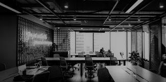 Anpartsselskab business